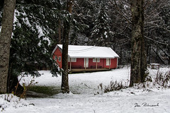 Hunting Camp-Sabinsville PA Snow (dfbphotos) Tags: 2018 november fall tioga buildingsarchitecture camp collections camps landscapes mountains nature snow trees wattlesrun sabinsville tiogacounty places weavercamp pa usa