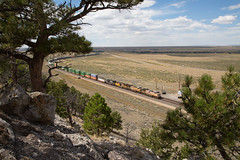 An almost endless two tier stack train passes Rock River. (Chris Firth of Wakey.) Tags: rockriver wyoming unionpacific up5897up7142 6787and8366 up6787 up7142 up5897 ns8366
