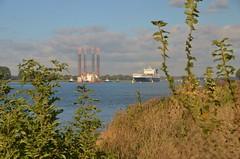 Multratug 16,  Multratug 5, Seafox 2, Fairplay 1, Fairplay 3, RPA 12 en Tulipa Seaways (Hugo Sluimer) Tags: hetscheur scheur waterweg portofrotterdam port haven onzehaven nlrtm zuidholland holland nederland