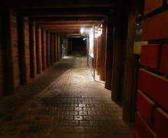 Wieliczka Saltmine (Petri Juhana) Tags: mine saltmine underground salt spooky deep poland wieliczka