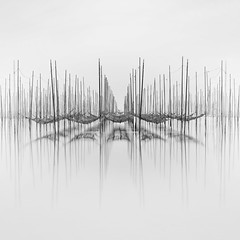 Nets (Giles McGarry (formerly kantryla)) Tags: japan seaweed farm tokoname black white monochrome square long exposure symmetry seascape seaweedfarm abstract longexposure fuji highkey