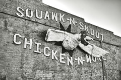 Squawk-N-Skoot (Clay Fraser) Tags: squawknskoot elreno oklahoma route66 sign chicken fujifilm xpro2 xf1855mm pinconnected