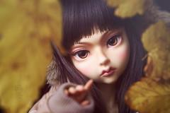 Autumn (Do Dolls Dream) Tags: autumn ball jointed doll bjd do dolls dream margaret dodollsdream