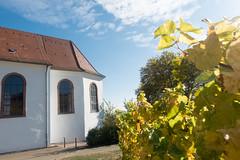 Dionysius Kapelle in Gleiszellen (PauPePro) Tags: federweisenfest gleiszellen herbst pfalz süw weinfest