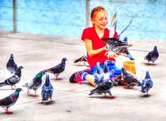Thank You Photography Gods ... (daystar297) Tags: streetportrait portrait girl birds feathers pigeons nature wildlife fortpiercefl florida nikon d90
