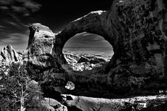 I See an Arch and I See All Around (Black & White, Arches National Park) (thor_mark ) Tags: anseladamslookfromcapturenx2 archesnationalpark azimuth10 blackwhite blueskies blueskieswithclouds canvas canyonlands capturenx2edited centralcanyonlands cloudwisps clouds colorefexpro coloradoplateau day7 desert desertlandscape desertmountainlandscape desertplantlife devilsgardenloop devilsgardenlooptrail devilsgardentrail devil'sgardentrail doubleoarch hdr highdesert incamerahdr intermountainwest junipertrees landscape largebushes layersofrock lookingnne naturalarch naturalarches nature nikond800e outside partlysunny portalview portfolio project365 rockformations sandstonearch sandstonecanyonwalls sandstonefin sandstonewalls singleimagehdr sunny trees utahhighdesert utahnationalparks2017 ut unitedstates