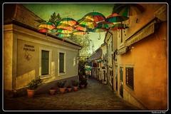 Szentendre_Hungary (ferdahejl) Tags: szentendre hungary dslr canondslr canoneos800d