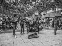 Street orchestra - Frankfurt (michaelhertel) Tags: frankfurt deutschland musik orchester sw bw monochrome people street