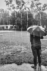 """Reminiscence"" (Shourav3820) Tags: bnw rain trees water grass monochromatic tree school building cloud friday umbrella man lonely belabo narsingdi dhaka xiaomi redmi4x asia indiansubcontinent babgladesh"