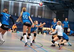 4A131240 (roel.ubels) Tags: volleybal eredivisie talent team papendal valkenhuizen sport topsport pharmafilter us tt 2018 volleyball indoor