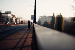 On the road (ewitsoe) Tags: 35mm autumn city fall mood nikond80 street travel poland urban warsaw bridge bokeh person walking morning light haze polska europe sunshine beams walkway capturethemoment lightandshadow