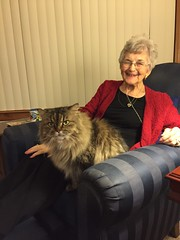 Mom with Armani (Philosopher Queen) Tags: mom michigan home visit kitty cat armani