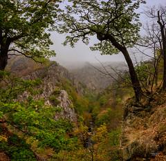 Herbst im Harz (junghahn24) Tags: autmn bode fall harz herbst hexenstieg mft olympusdigitalcamera olympusomdem10 panorama thale wald sachsenanhalt deutschland de