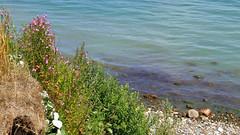 Tr18_74_R (vitalijsosna) Tags: lübeckerbucht timmendorf niendorf travemünde vitalijsosna meer see ostsee strand beach kur kurort park natur
