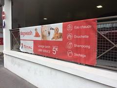 Dog Wash à Paris ! (gab113) Tags: dog wash lavage auto chien