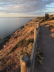 marion coastal path 07-10-18-20 (bill doyle [mobile and family]) Tags: hiking landscape iphone7plus 2018 coastal walking billdoyle walk australian marioncoastalwalking shoreline cityofmarion hike marion track southaustralia southaustralian trail walkingtrail australia sa cliff shore adelaide coast iphone7 outdoor walkingtrack
