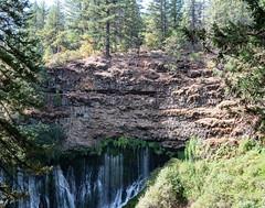 Cliff_119924 (gpferd) Tags: plant rock tree water waterfall burney california unitedstates us