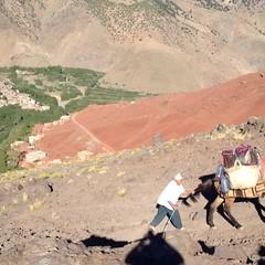 #trekking #in #the #high #atlas #mountain #of #morocco (berberatlasexperience) Tags: trekking high atlas mountain morocco