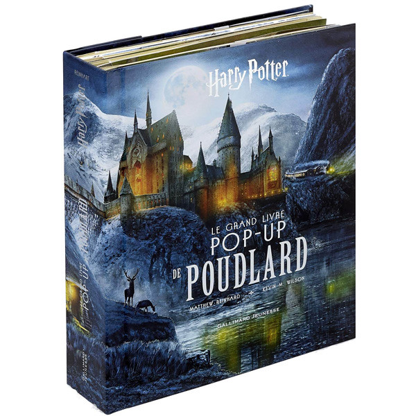 The World S Best Photos Of Harrypotter And Livre Flickr
