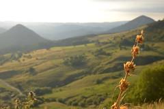 Sous le Mont Mézenc (Michel Seguret Thanks for 12,8 M views !!!) Tags: michelseguret nikon d800 pro france ardeche mezenc