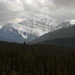 Jasper National Park, Mount Edith Cavell (3,363 m) thumbnail