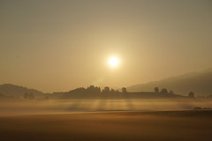 DSC04240 (Alexus Wendus) Tags: wald himmel berge bayern allgäu füssen forggensee wandern klettern seilbahn natur freiheit gipfel urlaub schöpfung landschaft sonnenaufgang nebel morgens kalt