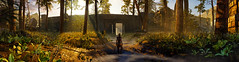 """The light of nature."" (Xenolith3D) Tags: hellbladesenuassacrifice hellblade senua panorama photomode nvidia nvidiaansel virtualphotography screenshot gamephotography game sunlight forest hd 4k pc"