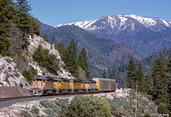 UP 3662 West at Rock Creek, CA (thechief500) Tags: featherriverroute railroads up rockcreek ca usa us