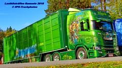 IMG_1785 LBT_Ramsele_2018 pstruckphotos (PS-Truckphotos #pstruckphotos) Tags: pstruckphotos pstruckphotos2018 lastbilsträffen lastbilsträffenramsele2018 lastbilstraffen lastbilstraffense ramsele truckmeet truckshow sweden sverige schweden truckpics truckphoto truckspotting truckspotter lastbil lastwagen lkw truck scania volvotrucks mercedesbenz lkwfotos truckphotos truckkphotography truckphotographer lastwagenbilder lastwagenfotos berthons lbtramsele lastbilstraffenramsele lastbilsträffenramsele lorry finland finnland scandinavia skandinavien