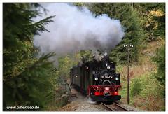 Preßnitztalbahn - 2018-10 (olherfoto) Tags: bahn eisenbahn schmalspurbahn museumsbahn presnitztalbahn dampf dampflok dampfzug vasut kisvasut vonat rail railway railroad narrowgauge steam train steamtrain canoneosm50