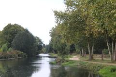 IMG_6250 (nic0v0dka) Tags: maraispoitevin deuxsèvres nouvelleaquitaine river riverside rivière green vert water eau fleuve poitoucharentes