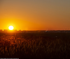 DSC_0010 (stashkevichv) Tags: aviation avia plane airplane airbus boeing nature gass forest sun sunset colors sky moon dark night nikon svo runway car rover rangerover airport airliners air airline