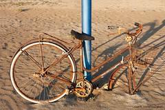 Rusted bike abandoned on the beach (Giada Cortellini) Tags: rust rusted bike bicycle beach bicicletta ruggine canon canonitalia sea spiaggia tramonto sunset lazio italia italy bici