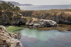 China Cove (NormFox) Tags: california carmel chinacove coast cove ocean outdoors pacificocean park pointlobos rocks sea seaweeds sky waves seascape