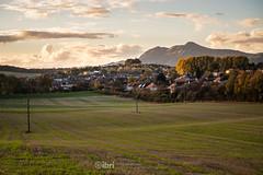 Gartmorn - 14 Oct 2018 - 30.jpg (ibriphotos) Tags: woodland alloaharbour blue sunset river alloa clackmannanshire riverforth trees gartmorndam leaves orange autumn evening goldenhour sky sunsets