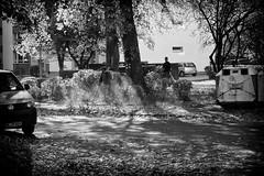OKSF 229 (Oliver Klas) Tags: okfotografien oliver klas street streetfotografie streetphotography strassenfotografie streetart streetphotographer streetphoto stadtleben streetlife streetculture urban schwarzweis schwarzweissfotografie blackandwhite monochrom farblos abstrakt dunkel hell grau schwarz weiss black white sw schwarzweiss personen people menschen persons volk familie angehörige bewohner bevölkerung leute europäer mann frau gesellschaft menschheit mensch völker kunst art künstler kultur künstlerisch deutschland germany stadt city europa deutsch staat westdeutschland ostdeutschland norddeutschland süddeutschland de