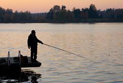 Fishing (Antti Tassberg) Tags: silhouette kalastaja jupperi syksy landscape espoo järvi pitkäjärvi autumn fall fisher fisherman lake uusimaa finland fi