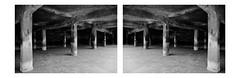 voûte (David Ian Ross) Tags: diptych miroir reflection reversed mirrored vault pier symmetry symétrique