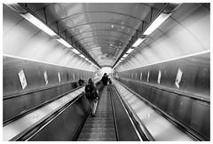 Downwards (awbaganz) Tags: metro subway prague praha prag tunnel light escalator fujifilm xf1024 xpro2 centraleurope europe urban transport publictransport metropolis czechrepublic