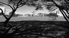 Moldura natural (André Felipe Carvalho) Tags: brasilia catedral preto branco