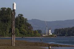 SauvieIsland_092418_1922-1 Lighthouse (Martine Yen) Tags: sauvieisland lighthouse