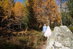 rendezvous in pastel (Toni_V) Tags: m2409632 rangefinder digitalrangefinder messsucher leicam leica mp typ240 type240 28mm elmaritm12828asph palpuognasee laidapalpuogna albula graubünden grisons grischun pastell pastel herbst autumn atun alps alpen switzerland schweiz suisse svizzera svizra europe rendezvous ©toniv 2018 181020