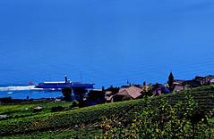 """""""La Suisse"""" à Rivaz (Diegojack) Tags: vaud suisse chexbres lavaux léman paysages rivaz bateau lasuisse belleepoque vignes vignobles nikon nikonpassion d500"""