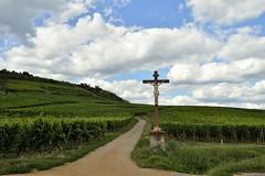 _DSC4022 (SLVA49) Tags: viñodos crucifijo flores nikon df 35mm