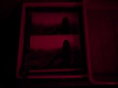 Arresto dello sviluppo (Simone Onorati) Tags: analog analogica cameraoscura darkroom film fotografia lucerossa pellicola photography redlight