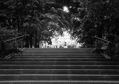 (Vlad Bobe) Tags: fomapan 100 fomapan100 monochrome blackwhite film stairs statue park bench canon canoneos1v