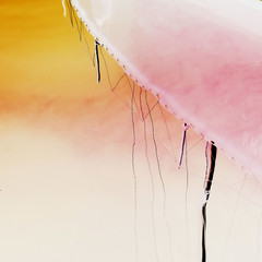 ...dreaming in orange and pink (claredlgm1) Tags: orange artwork abstract minimalism colorful fantasy