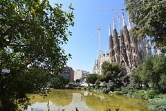 DSC_1476 (georgedimitriadis303) Tags: barcelona catalonia spain travel lasagradafamilia churches architect antonigaudí