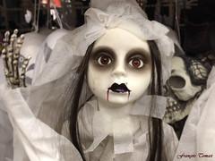 Bientôt Halloween !!! (François Tomasi) Tags: halloween françoistomasi