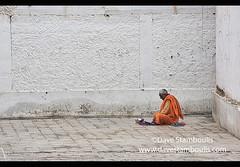 Alone with an alms bowl, Leh, Ladakh, India (jitenshaman) Tags: travel worldtravel destination destinations asia asian india indian ladakh ladakhi buddhist tibetanbuddhist tibetanbuddhism culture cultural tradition traditional chokhang chokhangvihara gompa monastery pilgrim pilgrims pilgrimage faith belief religion religious merit alms alm beg beggar robed bald disciple hindu monk novice sit silence meditate meditation alone sitting